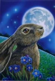 Moon Gazing Hare - magneet van Lisa Parker