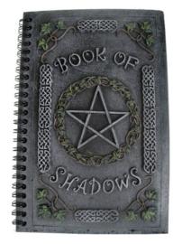 Ivy Book Of Shadows - 22cm hoog