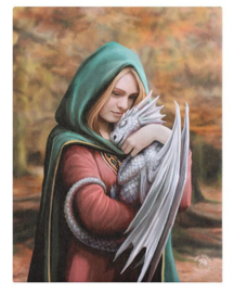 Safe Haven - wandbord van Anne Stokes - 25 x 19 cm
