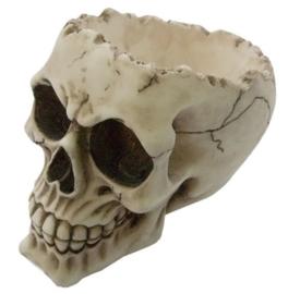 Asbak doodskop 'Lobo' - 14,5 cm hoog