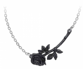 Alchemy Gothic design nekketting - Black Rose Enigma - 4.6 cm breed