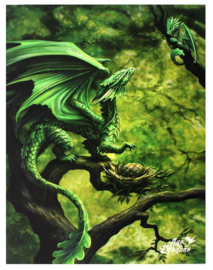 Forest Dragon - Anne Stokes - canvas wandbord 25 x 19 cm