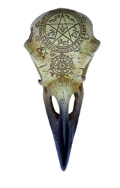Alchemy of England The Vault - Omega Raven Skull - 16.50 cm lang