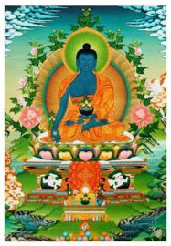 Tibetaanse thanka blauwe Sakyamuni Shakyamuni Amitabha Boeddha - 60 x 90 cm