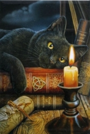 Witching Hour - magneet van Lisa Parker
