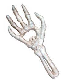 Alchemy England The Vault - flesopener - skeletaal hand - 29 cm lang - wit