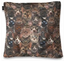Kussenhoes Liquor Brand - Cult Cats - 50 x 50 cm