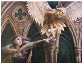 Owl Messenger - wandbord van Anne Stokes - 25 x 19 cm