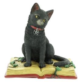 Eclipse - zwarte kat zittend op boek Wicca beeld - 12 cm hoog