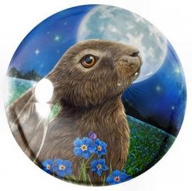 Glazen presse papier Moon Gazing Hare - Lisa Parker - 8 cm doorsnee