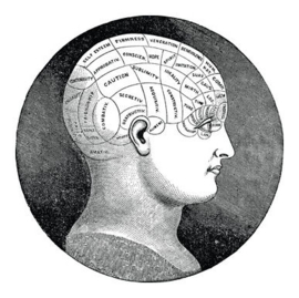 Phrenology - (Frenologie)