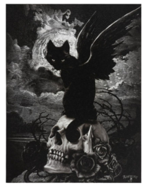 Alchemy England canvas wandbord - Nine lives of Poe - 19 x 25 cm