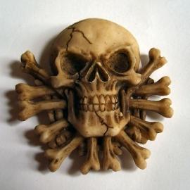 Magneet skull 1