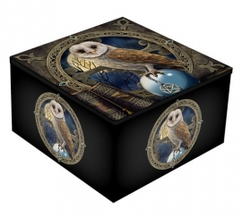 Mirror box  - Spell Keeper Owl - design Lisa Parker
