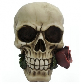 `Rose from the dead` - skull with rose