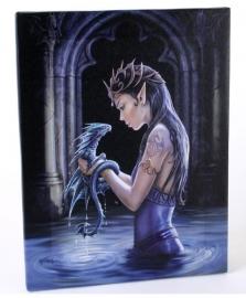 Water Dragon - wandbord van Anne Stokes - 25 x 19 cm