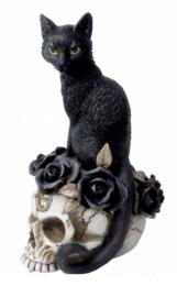 Alchemy of England The Vault - Grimalkin's Ghost - Zwarte kat op doodskop met rozen - 18.5 cm hoog