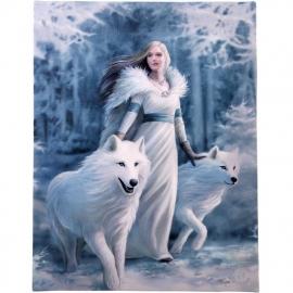 Winter Guardian - wandbord van Anne Stokes - 25 x 19 cm