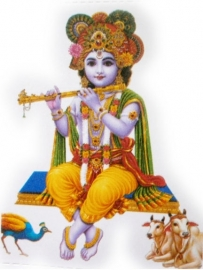 Sticker Krishna 3