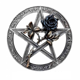 Alchemy of England The Vault - Ruah Vered Wall Mount  Altar Piece - pentagram met roos - 24 cm doorsnee