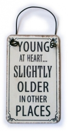 Mini metalen bord - Young at heart - 8 x 5 cm