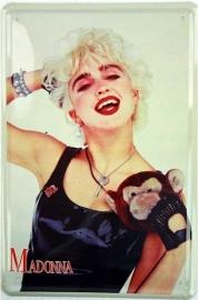 Tin sign Madonna 20 x 30 cm