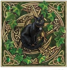 Pentagram Cat wandbord Lisa Parker 28 x 28 cm