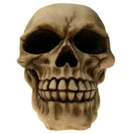 `The Joker` - lachende doodskop - 12 cm hoog