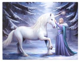 Pure Magic Anne Stokes canvas wandbord 25 x 19 cm
