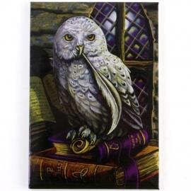Spell Owl - koelkastmagneet van Lisa Parker