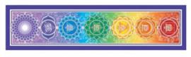 Bumper sticker Rainbow Chakra