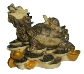 Feng Shui Schildpad met Drakenhoofd 11 x 12 cm
