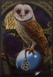 Crystal Ball Owl - magneet van Lisa Parker
