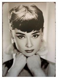 Tin sign Audrey 2 20 x 30 cm