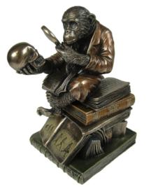 Darwinisme - bronzen beeld sieradendoos - aap met doodskop en vergrootglas - 17.5 cm hoog