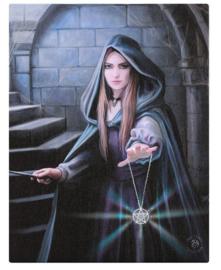 Light in the Darkness - wandbord van Anne Stokes - 25 x 19 cm