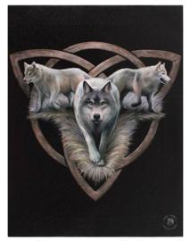 Wolf trio in triquetra - canvas wandbord van Anne Stokes - 19 x 25 cm
