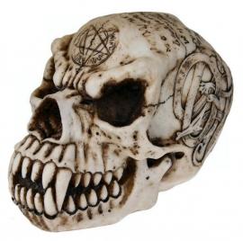 Occulte doodskop - 19 cm hoog