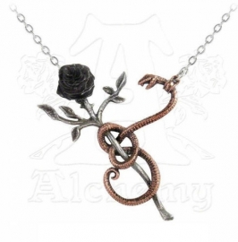 Alchemy Gothic ketting - A Rose for Eve