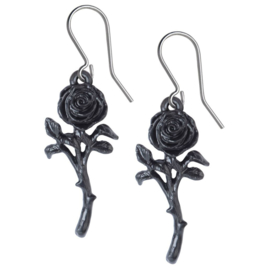 Alchemy Gothic hangoorbellen - Romance of the Black Rose - 4,7 cm hoog
