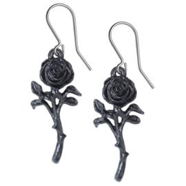Alchemy Gothic hangoorbellen - Romance of the Black Rose - 4,7 cm hoog