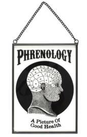 Phrenologie - glazen wandbord - 18 x 13 cm