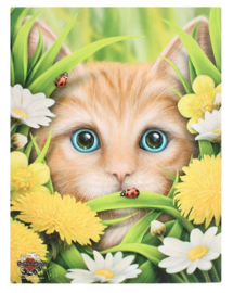 Summer Cat - canvas wandbord - Linda M Jones - 25 x 19 cm