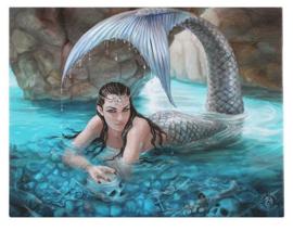 Hidden Depths - wandbord van Anne Stokes - 25 x 19 cm