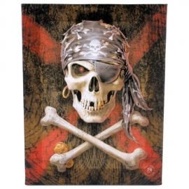 Pirate Skull - Anne stokes wall plaque 25 x 19 cm