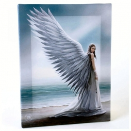 Spirit Guide - wandbord van Anne Stokes - 25 x 19 cm
