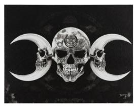 Alchemy England canvas wandbord - Drievoudige Doodskop Maan - 19 x 25 cm