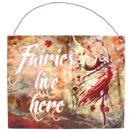 Metalen wandbord Anne Stokes - Fairies live here - 19 x 24 cm