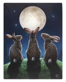 Moon Shadows - canvas wandbord - Lisa Parker - 25 x 19 cm
