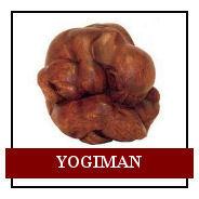 4 yogiman.jpg